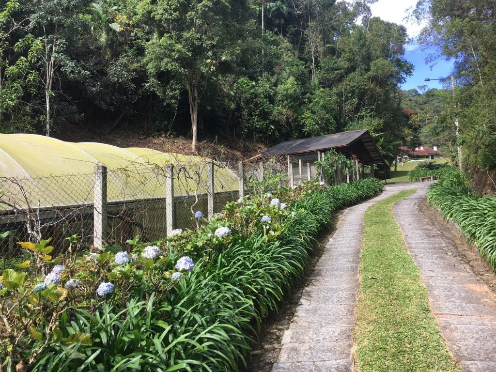 Luxury Residence in Nova Friburgo with 9 hectares land